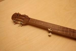 Folk-Banjo-2